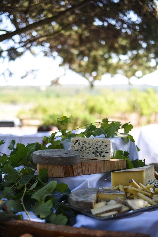 chateau-lhospitalet-vineyard-harvest-festival-thankfifi-scottish-travel-blog-24