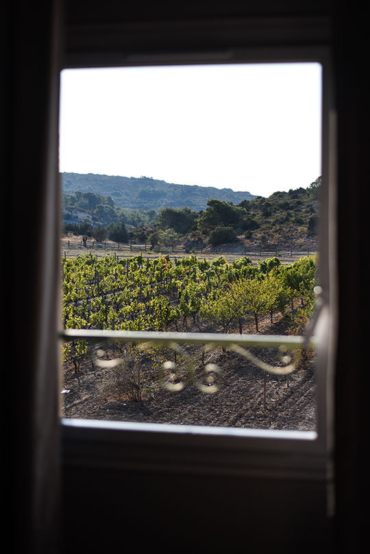 chateau-lhospitalet-vineyard-harvest-festival-thankfifi-scottish-travel-blog