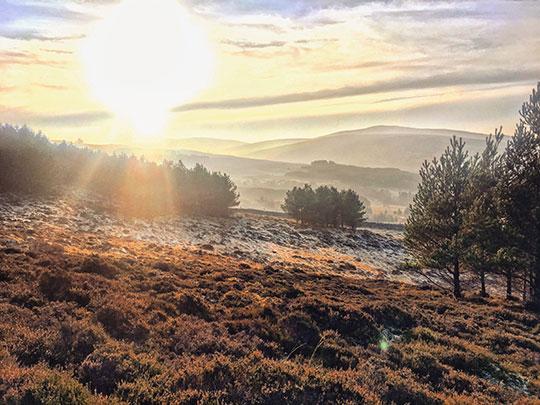 Kenmore-Hill-walk-near-Aberfeldy---Thankfifi-Scottish-travel-blog-14