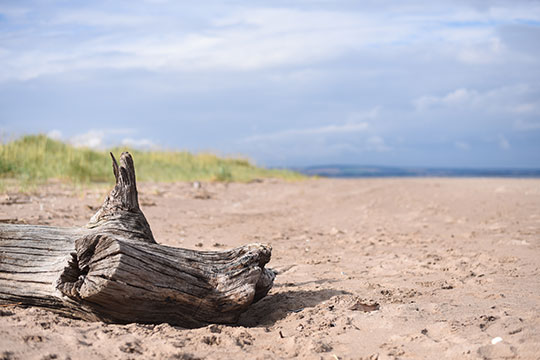 Scottish-Beach-Tour,-Tentsmuir-beach-Scotland---Thankfifi-Scottish-travel-blog-7