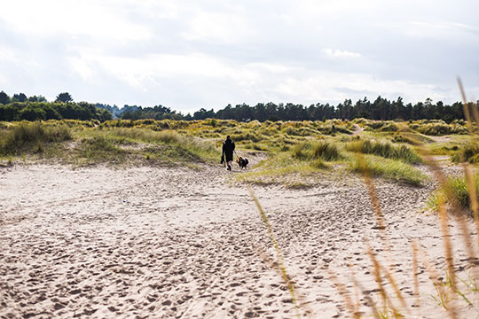Scottish-Beach-Tour,-Tentsmuir-beach-Scotland---Thankfifi-Scottish-travel-blog-8