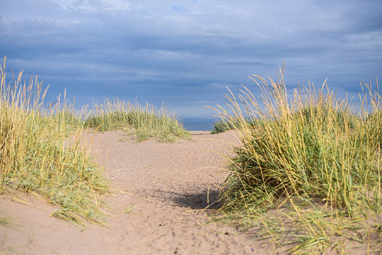 Scottish-Beach-Tour,-Tentsmuir-beach-Scotland---Thankfifi-Scottish-travel-blog-9