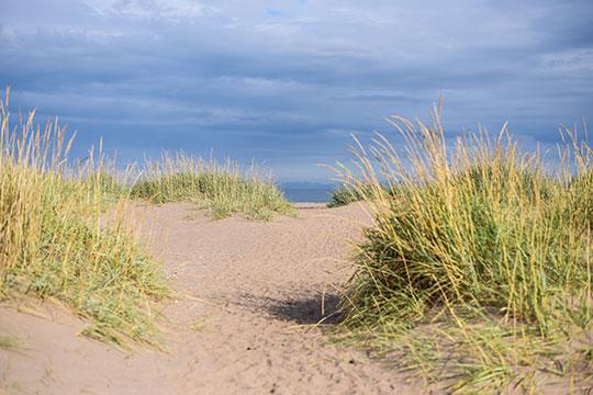 Scottish-Beach-Tour,-Tentsmuir-beach-Scotland---Thankfifi-Scottish-travel-blog-9